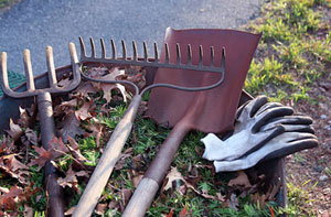 Garden Maintenance Norfolk - Garden Maintenance Services